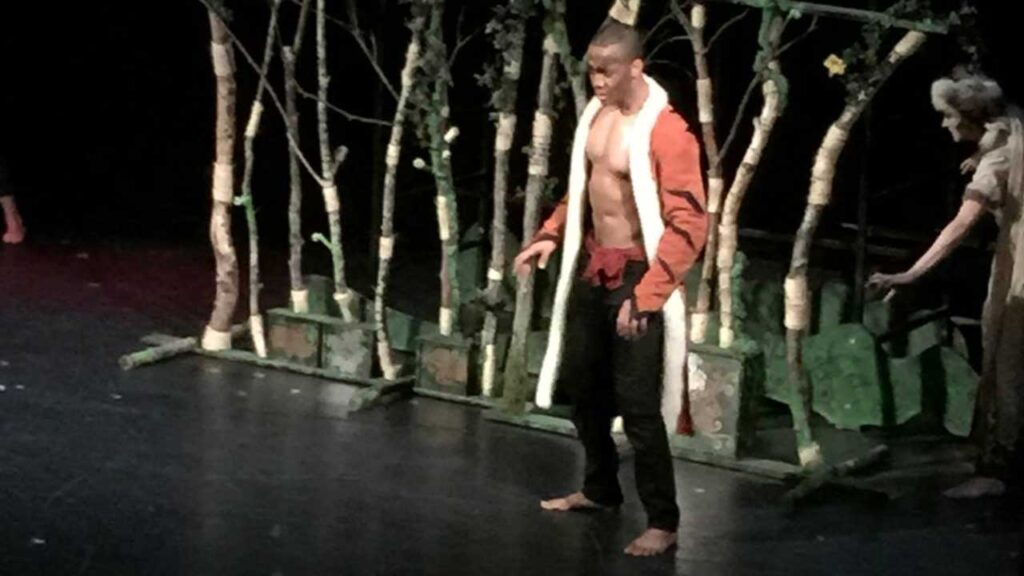 Une scène du Livre de la Jungle
